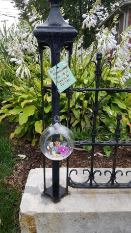 Fairy globe found in Davenport near Alumni House of St. Ambrose University.